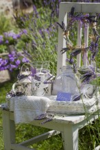 Fotografie květin, fotky květinových dekorací pro publikace na téma fotografie, květiny, kytky, dekorace, fotky, chair, decoration, flower, garden, glass, lamp, lantern, lavender, love, nobody, outdoor, summer, tray, wreath