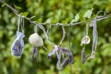 Fotografie květin, fotky květinových dekorací pro publikace na téma fotografie, květiny, kytky, dekorace, fotky, bag, decoration, flower, garden, hang, hanged, ivy, lavender, nobody, outdoor, shell, summer