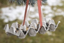 Fotografie květin, fotky květinových dekorací pro publikace na téma fotografie, květiny, kytky, dekorace, fotky, bird, birds, egg holder, feeder, feeding, garden, hang, outdoor, paper, ribbon, seed, winter