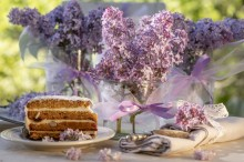 Fotografie květin, fotky květinových dekorací pro publikace na téma fotografie, květiny, kytky, dekorace, fotky, cake, dessert, flower decoration, garden, glass, lilac, nobody, outdoor, pink, ribbon, spring, sweet, wedding