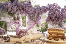 Fotografie květin, fotky květinových dekorací pro publikace na téma fotografie, květiny, kytky, dekorace, fotky, cake, cutlery, flower decoration, garden, glass, lilac, nobody, outdoor, pink, ribbon, spring, sweet, vase
