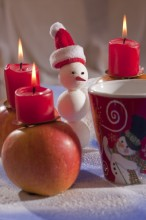 Fotografie květin, fotky květinových dekorací pro publikace na téma fotografie, květiny, kytky, dekorace, fotky, apple, candle, christmas, cup, ground cherry, indoor, nobody, red, snow, snowman, winter, xmas