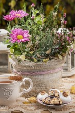 Fotografie květin, fotky květinových dekorací pro publikace na téma fotografie, květiny, kytky, dekorace, fotky, autumn, branch, cake, cup, daisy, diy, flower decoration, garden, heather, lace, outdoor, pot, sweet, tea time