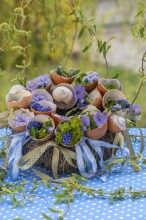 Fotografie květin, fotky květinových dekorací pro publikace na téma fotografie, květiny, kytky, dekorace, fotky, decoration, easter, egg, egg shell, flower, forget me not, garden, hyacinth, muscari, nobody, outdoor, spring, willow branch