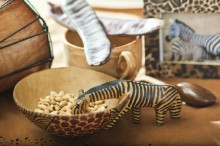 Fotografie květin, fotky květinových dekorací pro publikace na téma fotografie, květiny, kytky, dekorace, fotky, cup, decoration, food, image, nobody, pattern, picture, table, wood, zebra